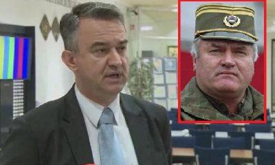 Darko Mladic Presuda