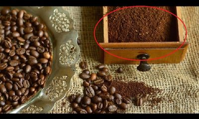 Talog Od Kafe