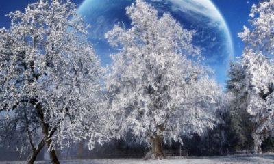 Dzemreta Zima Proljece