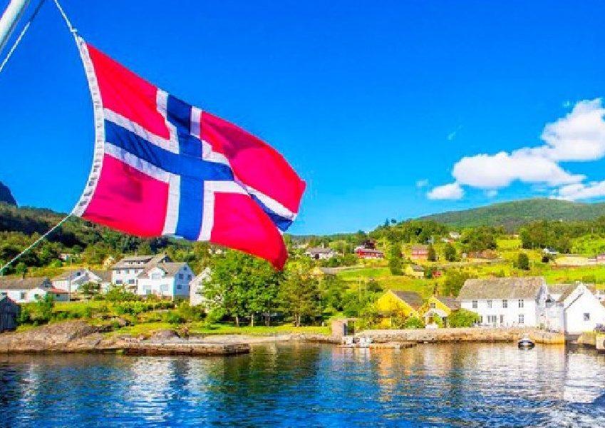 Norveska Rad Ovce