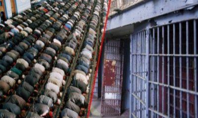 Americki Zatvorenici Islam