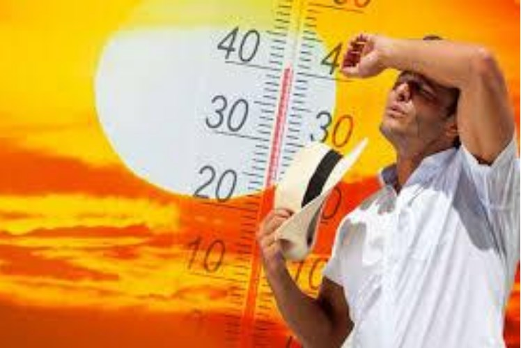 Vrucina Klima Trik