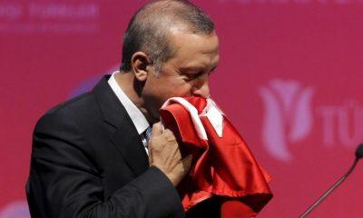 Erdogan Turska Lekcije