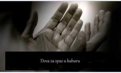 Dova Kabur