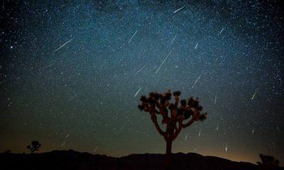 Zvijezda Padalica